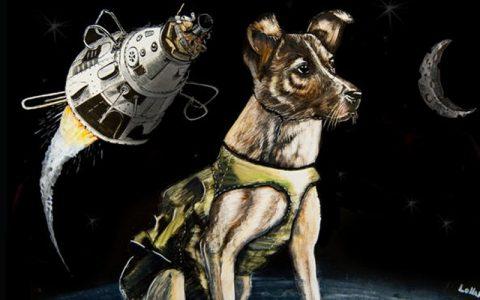 Životinje lansirane u svemir