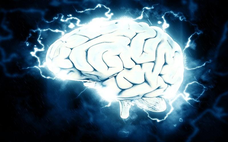 Ne odbacujte lako stari mozak
