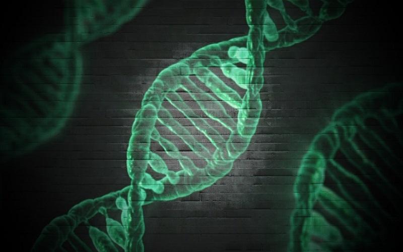 Umjetna proizvodnja gena