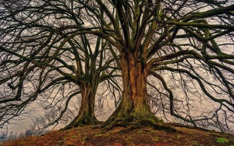 Keltski ritual i pročišćenje duha