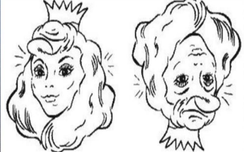 Iluzije lica