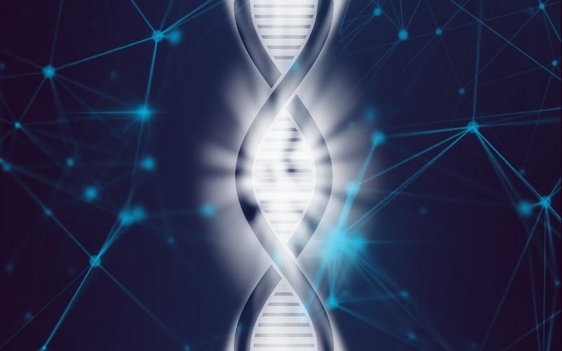 Ljudski genom - Zanimljivo otkriće šifre života