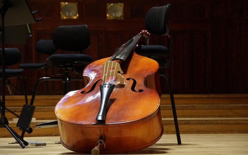 Gudački instrumenti - Kontrabas