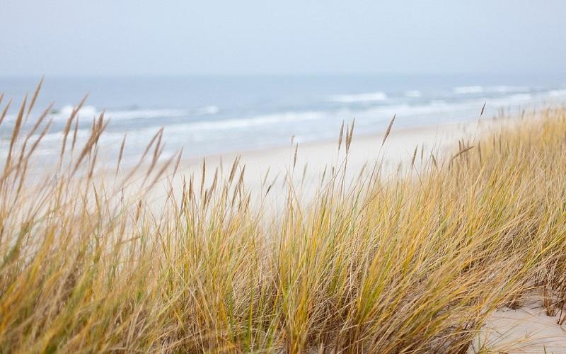 Najljepše slike plaža - Baltičko more