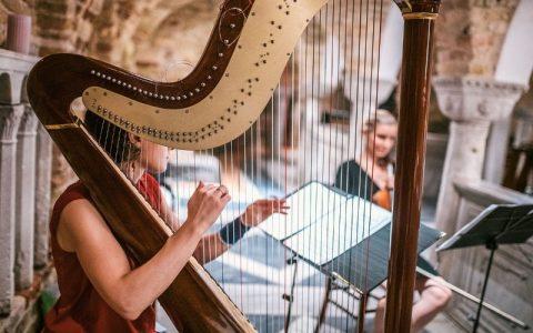 Glazbeni instrumenti kojima se stvara razna lijepa glazba