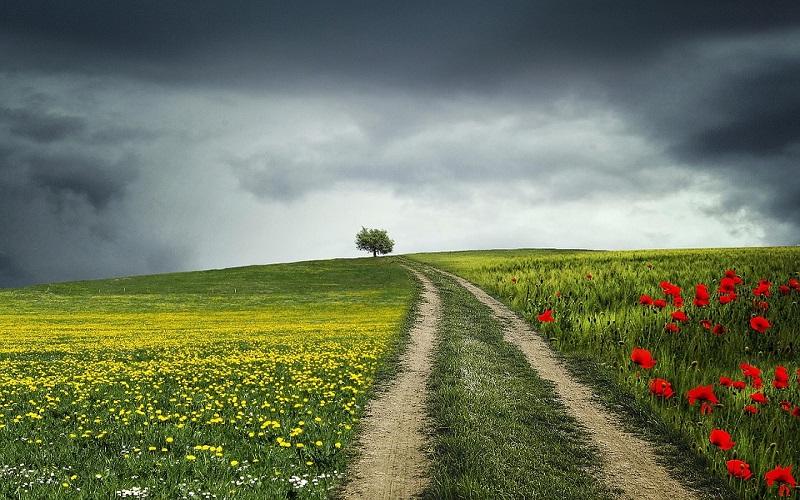 Godišnja doba - Ljeto i lijepa sjećanja
