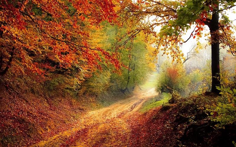 Godišnja doba - Jesen