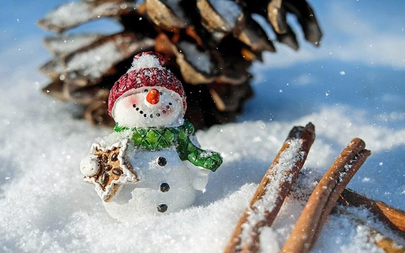 Zima 1999 i snjegović