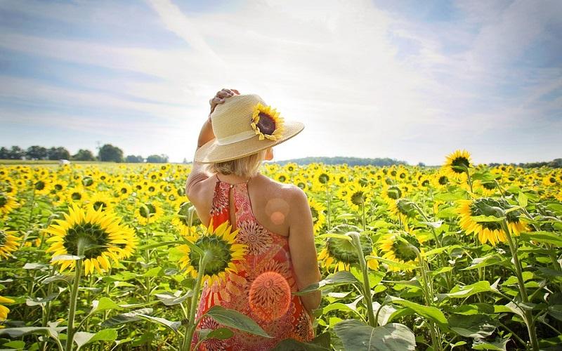 Godišnja doba i uvijek divno ljeto