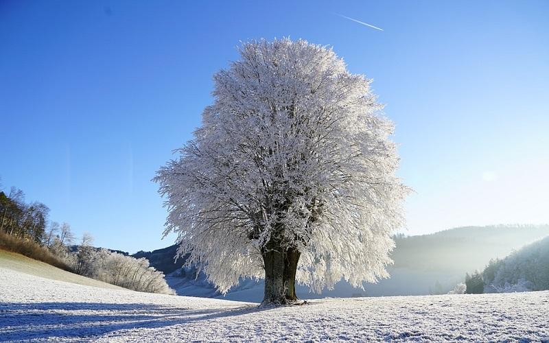 Zima original slike