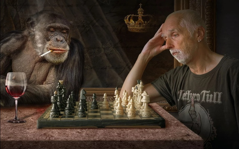 šah za decu