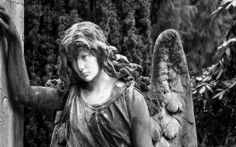 anđeli fotografije