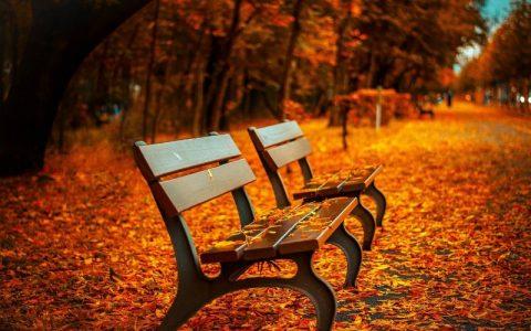 Slike jeseni čije će vas predivne boje dobro opustiti