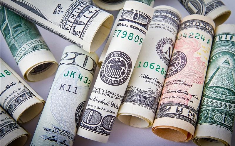 how to make a money tree