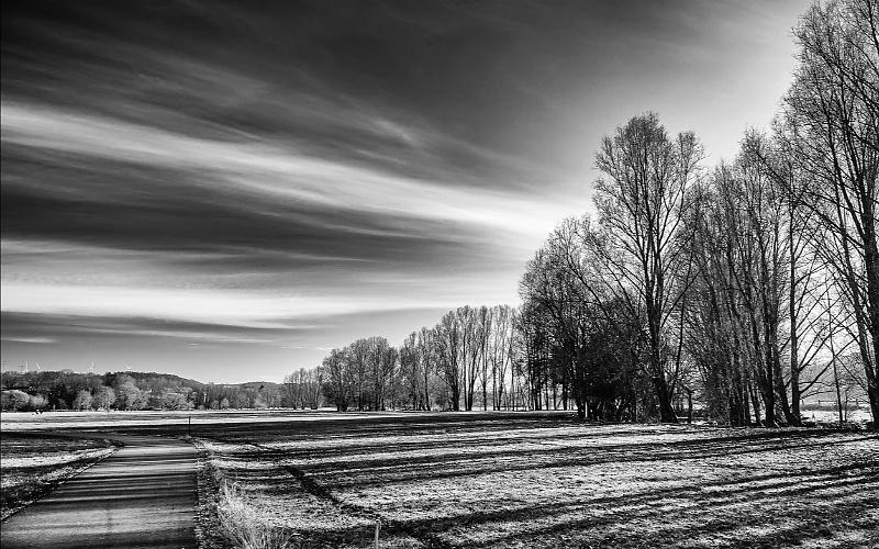 crno bijele slike prirode
