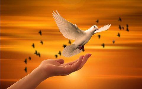 Vjerski citati koji će vam totalno popraviti raspoloženje