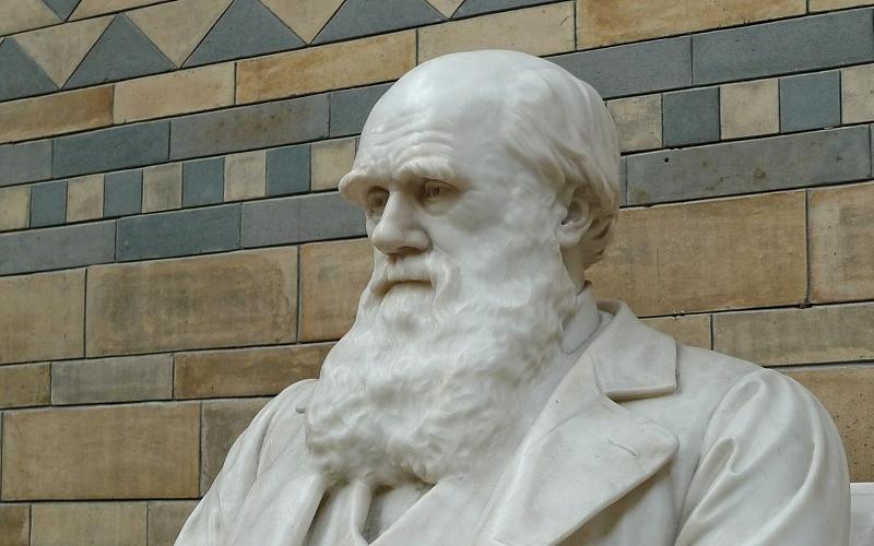 Značenje riječi Darvinizam - Šta znači riječ Darvinizam