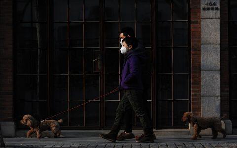 Epidemija koja se širi brže od koronavirusa