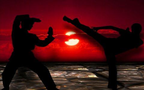 Borilačke vještine koje su oduvijek bile zanimljive