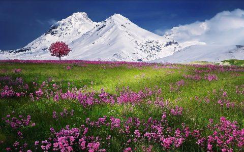 Ljepote Alpa koje su oduvijek bile privlačne