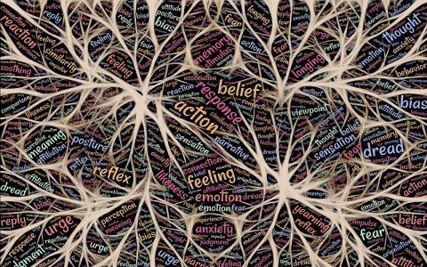 Značenje riječi Racionalizam: Šta znači taj pojam