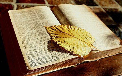 Knjiga postanka 15: Biblija i Stari zavjet