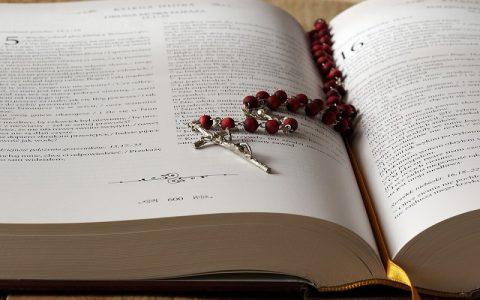 Evanđelje po Marku 8: Biblija i Novi zavjet