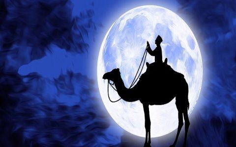 Kuran poglavlje 48: Al-Fath - Pobjeda (Medina - 29 ajeta)