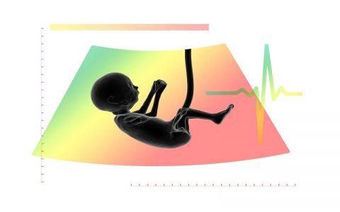 Rasprava o pobačaju: Pobačaj ili abortus, i zašto ne?