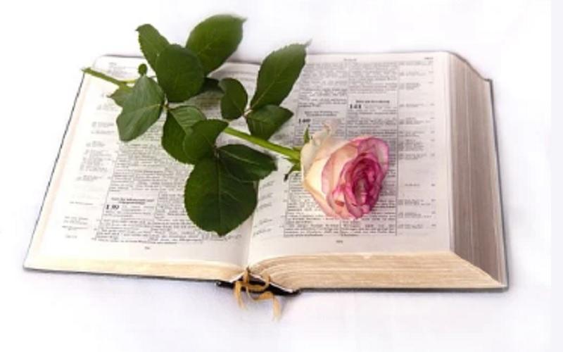 Druga knjiga o Samuelu 1: Biblija i Stari zavjet