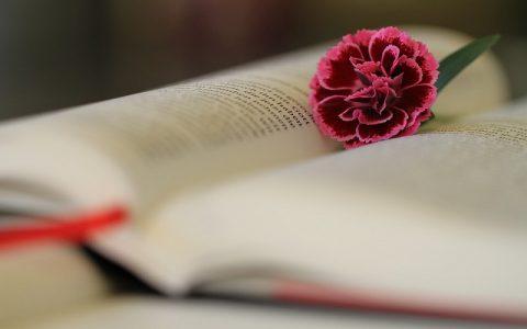 Levitski Zakonik 10: Biblija i Stari zavjet
