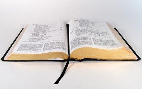 Levitski Zakonik 14: Biblija i Stari zavjet
