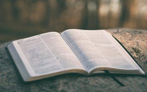 Knjiga o Jobu 1: Biblija i Stari zavjet
