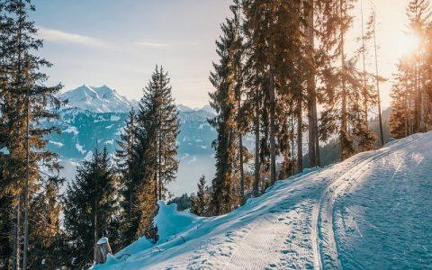 Estera 3: Biblija i Stari zavjet