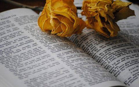 Psalmi 23 i 24: Biblija i Stari zavjet