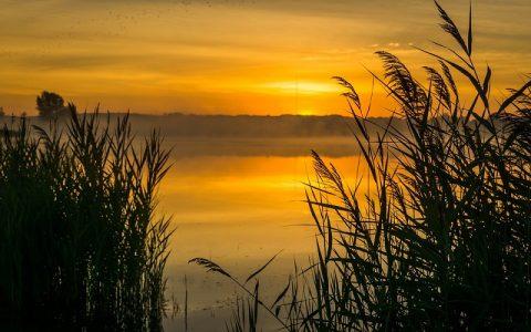 Psalmi 17 i 18: Biblija i Stari zavjet