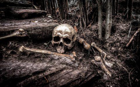 Čudnovati kult mrtvih