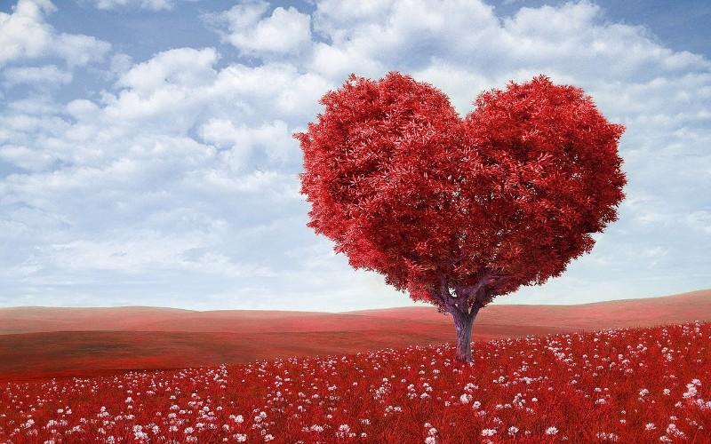 Citati o ljubavi te slavne osobe koje su ih napisale