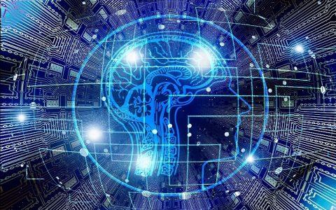 Značenje riječi Inteligencija - Šta znači riječ Inteligencija