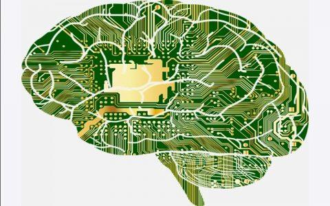 Značenje riječi Intelekt - Šta znači riječ Intelekt