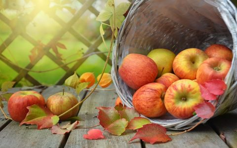Omlet od jabuka - Najbolji recepti za slatka jela