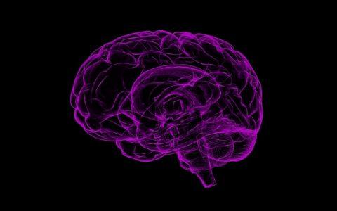 Značenje riječi Pamćenje: Šta znači taj pojam