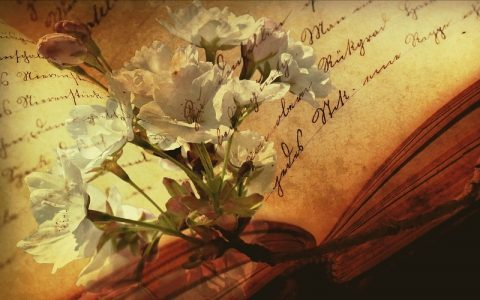 Značenje riječi Sinonimnost: Šta znači taj pojam