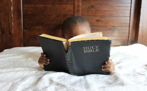 Knjiga postanka 43: Biblija i Stari zavjet