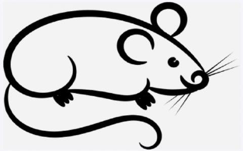 Sjednica miševa: Bajke za djecu i priče za laku noć