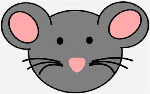 Gradski miš i seoski miš: Bajke za djecu i priče za laku noć