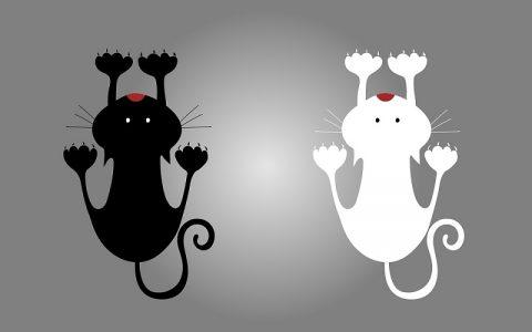 Pijetao i mačka i miš: Bajke za djecu i priče za laku noć