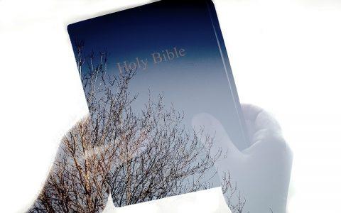 Pjesma nad pjesmama 8: Biblija i Stari zavjet