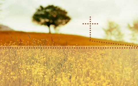 Otkrivenje 5: Biblija i Novi zavjet