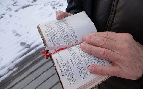 Knjiga o Jobu 8: Biblija i Stari zavjet